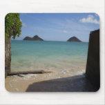 Hawaiana del paraíso… tapete de ratón