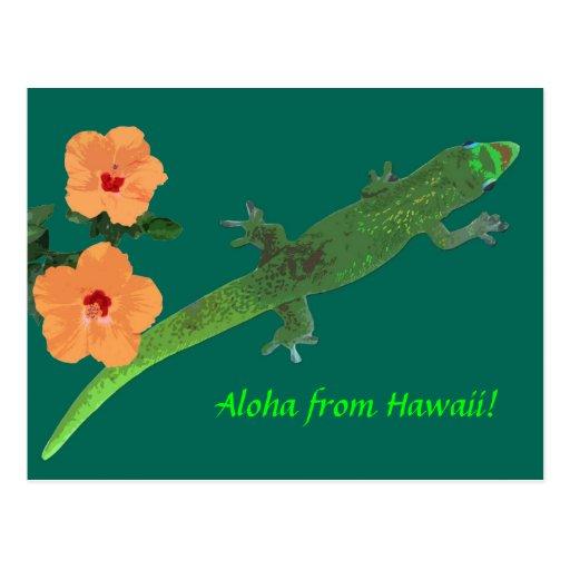 """""""Hawaiana Gecko de Hawaii"""" y postal del hibisco"""