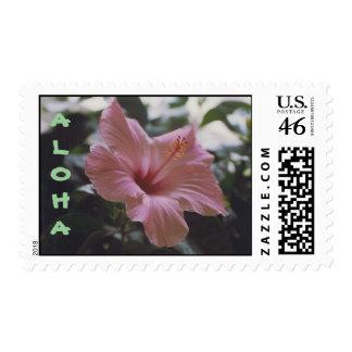 HAWAIANA - sellos