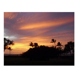 Hawaii (17) postcard