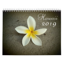 Hawaii 2019 scenic destination calendar