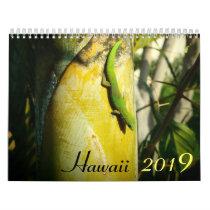 Hawaii 2019 scenic destinations calendar