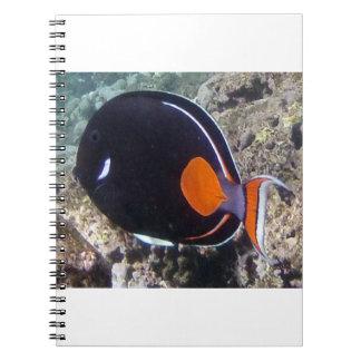 Hawaii Achilles Tang Fish Notebook