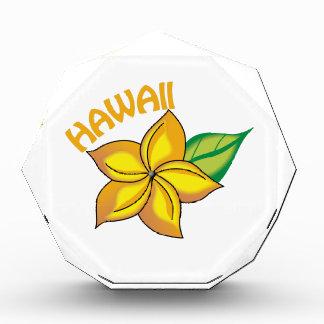 Hawaii Acrylic Award