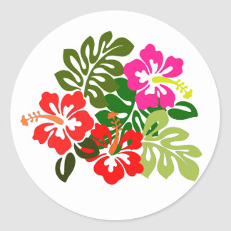 Hawaii Admissions Day - Hawaii Day Classic Round Sticker