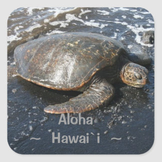Hawaii Aloha Honu Sea Turtle Square Sticker