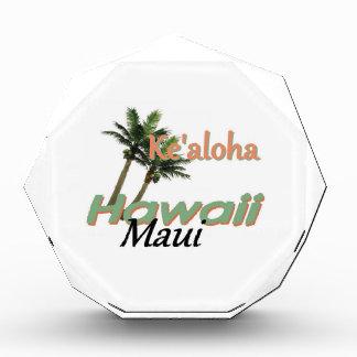 HAWAII AWARD