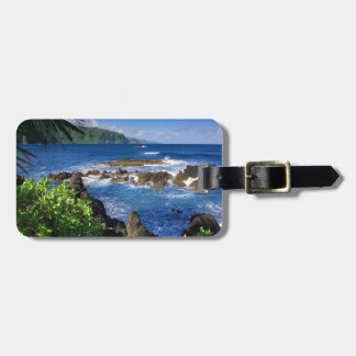 Hawaii Beach Scenery Travel Bag Tag
