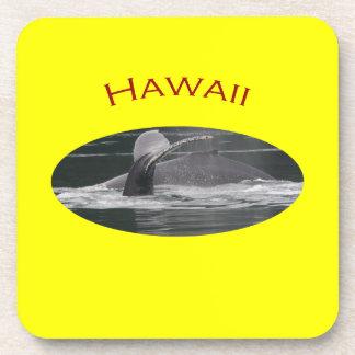 Hawaii Beverage Coaster