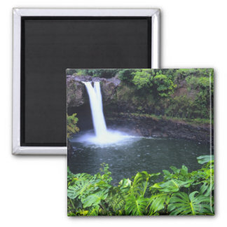 Hawaii, Big Island, Hilo, Rainbow Falls, Lush 2 Inch Square Magnet