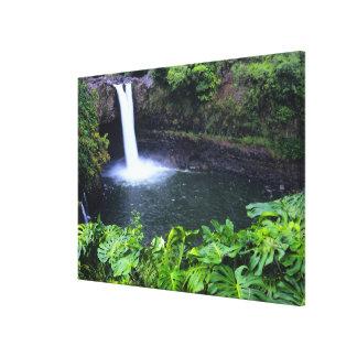 Hawaii, Big Island, Hilo, Rainbow Falls, Lush Gallery Wrapped Canvas