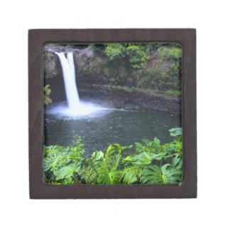 Hawaii, Big Island, Hilo, Rainbow Falls, Lush Keepsake Box