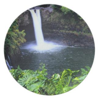 Hawaii, Big Island, Hilo, Rainbow Falls, Lush Melamine Plate