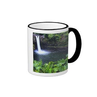 Hawaii, Big Island, Hilo, Rainbow Falls, Lush Mugs