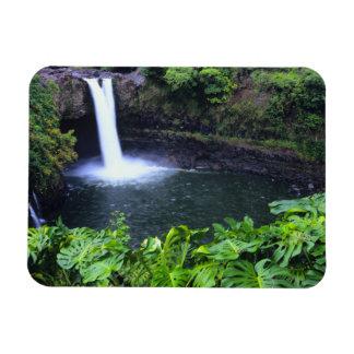 Hawaii, Big Island, Hilo, Rainbow Falls, Lush Rectangle Magnets