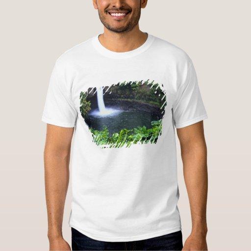Hawaii, Big Island, Hilo, Rainbow Falls, Lush Shirt