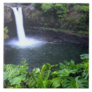 Hawaii, Big Island, Hilo, Rainbow Falls, Lush Tiles
