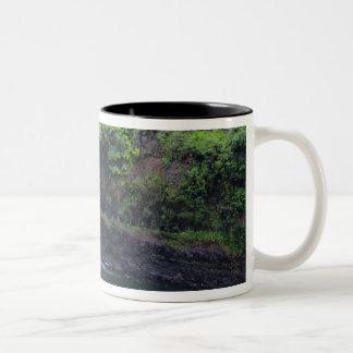 Hawaii, Big Island, Hilo, Rainbow Falls, Lush Two-Tone Coffee Mug