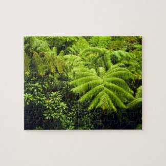 Hawaii, Big Island, Lush tropical greenery in 2 Jigsaw Puzzle