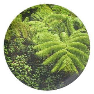 Hawaii, Big Island, Lush tropical greenery in 2 Plates