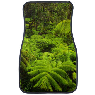 Hawaii, Big Island, Lush tropical greenery in Car Floor Mat