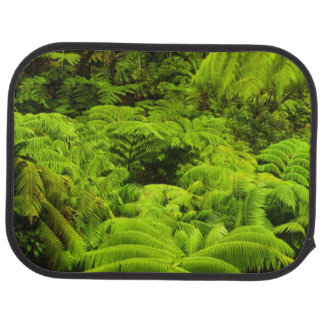 Hawaii, Big Island, Lush tropical greenery in Car Mat