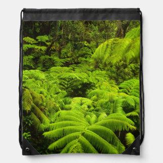 Hawaii, Big Island, Lush tropical greenery in Cinch Bags