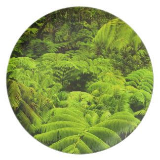 Hawaii, Big Island, Lush tropical greenery in Party Plates