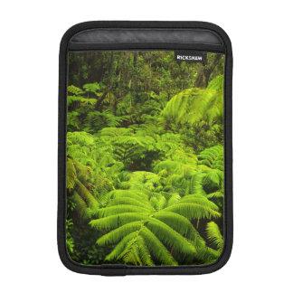 Hawaii, Big Island, Lush tropical greenery in Sleeve For iPad Mini