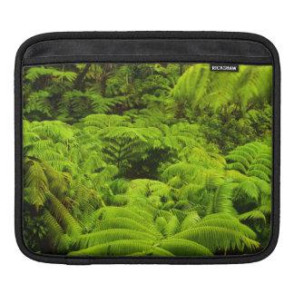 Hawaii, Big Island, Lush tropical greenery in Sleeve For iPads