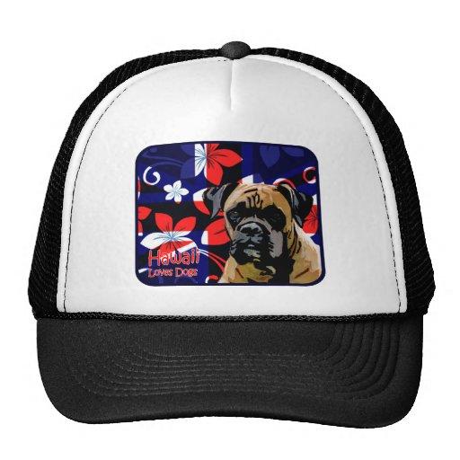 Hawaii Boxer Trucker Hat