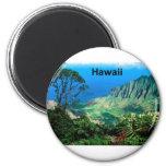 Hawaii Breezes Kalalau Valley Kauai (St.K.) 2 Inch Round Magnet