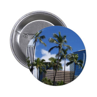 Hawaii Pinback Button
