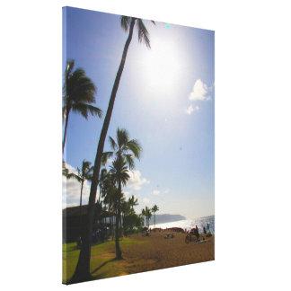 Hawaii Canvas Print