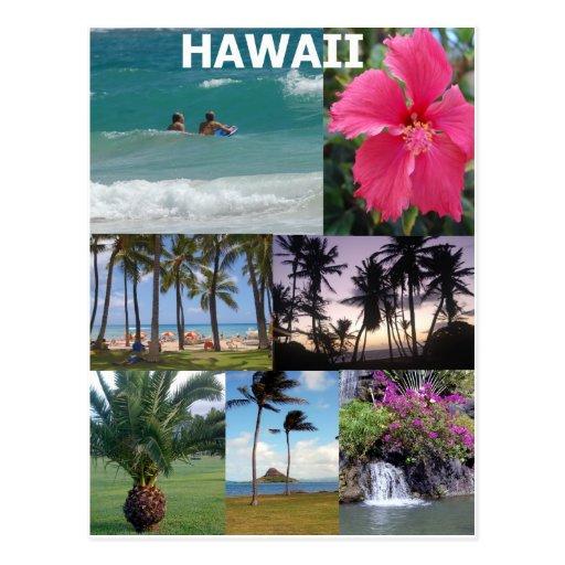 Hawaii divina por Khoncepts Tarjeta Postal