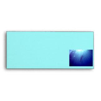 Hawaii Dolphin Envelope