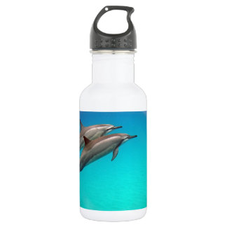 Hawaii Dolphins 18oz Water Bottle
