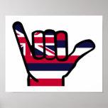 Hawaii flag hand poster