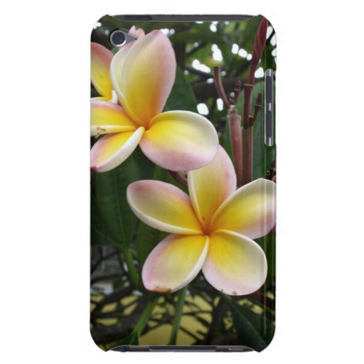 hawaii flower Case-Mate iPod touch case