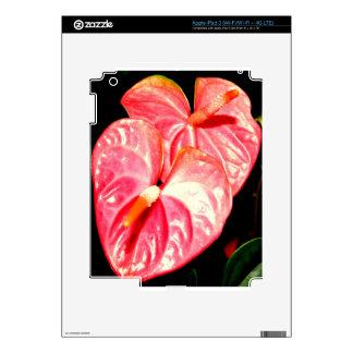 Hawaii Flower iPad 3 Skins