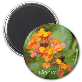 Hawaii Flower Magnet