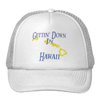 Hawaii - Gettin' Down Trucker Hat