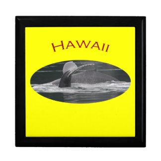 Hawaii Gift Box