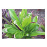 Hawaii Good Luck Plant Placemats