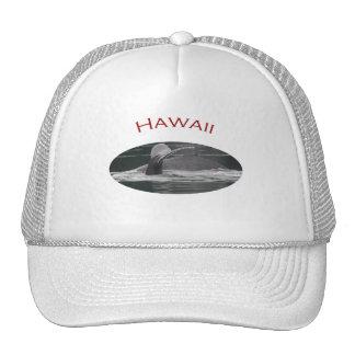 Hawaii Gorro