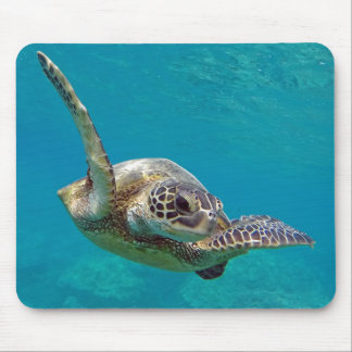 Hawaii Green Sea Turtle - Honu Mouse Pad