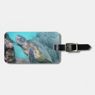 Hawaii Green Sea Turtle Luggage Tag
