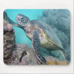 "Hawaii Green Sea Turtle Mouse Pad<br><div class=""desc"">There are many Green Sea Turtles in Hawaii. Hanauma Bay Oahu Hawaii is a popular place for snorkeling and seeing Green Sea Turtles. Turtles are called Honu in Hawaiian language.</div>"