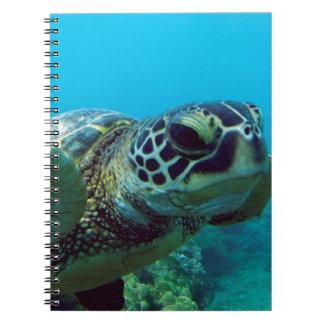 Hawaii Green Sea Turtle Notebook