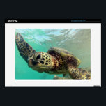 "Hawaii Green Sea Turtle Skin For Laptop<br><div class=""desc"">Hanauma Bay is located in Hawaii on the island of Oahu. There are over 350 species of fish that live in Hanauma Bay. There are many Hawaii Green Sea Turtles, Parrot and Trigger Fish inside Hanauma Bay. Turtles are called Honu in Hawaiian language. The Trigger Fish is the State Fish....</div>"